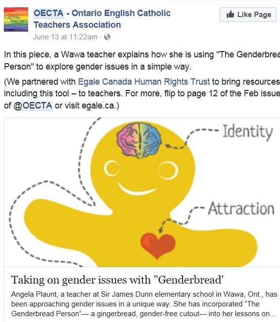OECTA genderbread
